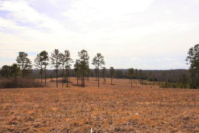 Lot 17 Maddie Way, Jamestown, TN 38556 (#1110517) :: Realty Executives Associates Main Street