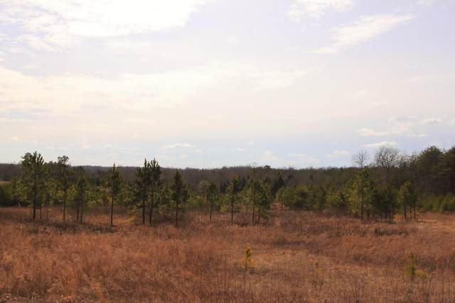 Lot 16 Paddock Court, Jamestown, TN 38556 (#1110519) :: Realty Executives Associates Main Street