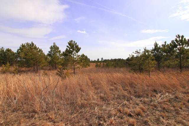 Lot 26 Maddie Way, Jamestown, TN 38556 (#1110529) :: Realty Executives Associates Main Street