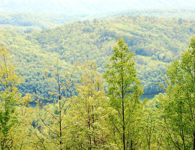 Lot 421 Chimney Rock, New Tazewell, TN 37825 (#1111052) :: Realty Executives