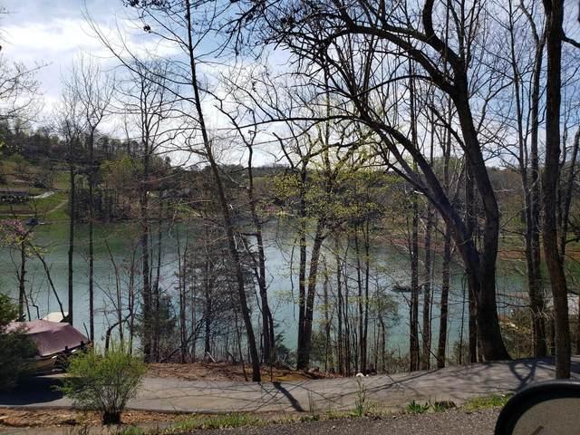 Springs Dock, LaFollette, TN 37766 (#1113246) :: Billy Houston Group