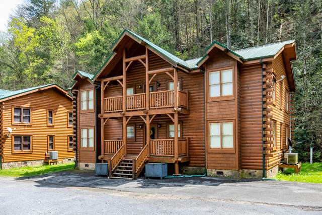 315 Caney Creek Rd, Pigeon Forge, TN 37863 (#1114611) :: The Terrell Team