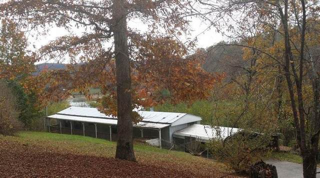 792 Straight Branch Rd, Speedwell, TN 37870 (#1115854) :: Cindy Kraus Group | Realty Executives Associates
