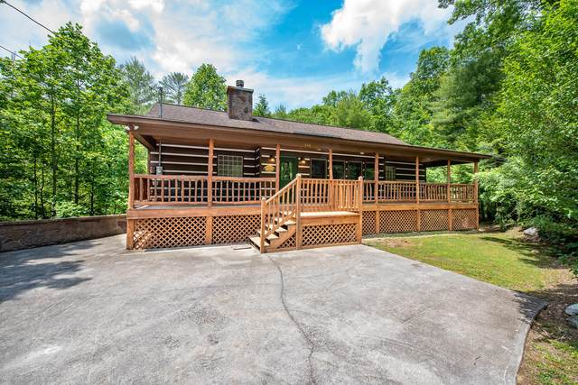 316 Rainbow Circle, Townsend, TN 37882 (#1115870) :: The Sands Group
