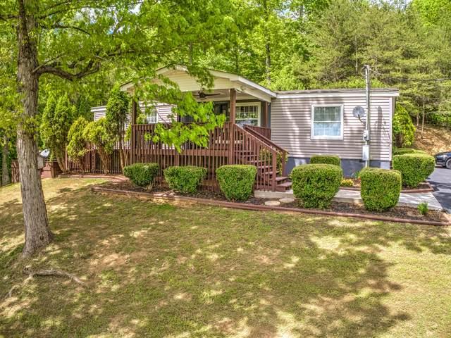 682 Cane Creek Rd, Rocky Top, TN 37769 (#1118071) :: Venture Real Estate Services, Inc.