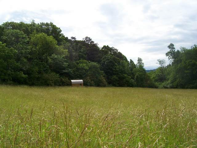 Lot 13 Autumn Woods Tr, Sweetwater, TN 37874 (#1118221) :: Billy Houston Group