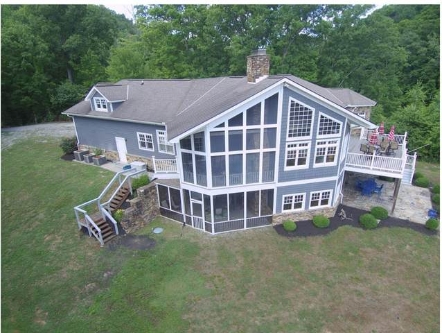 629 Wildcat Hollow Rd, New Tazewell, TN 37825 (#1119417) :: Venture Real Estate Services, Inc.