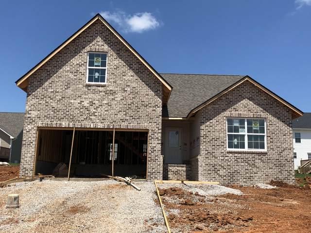 435 Kline Drive, Loudon, TN 37774 (#1119875) :: Exit Real Estate Professionals Network