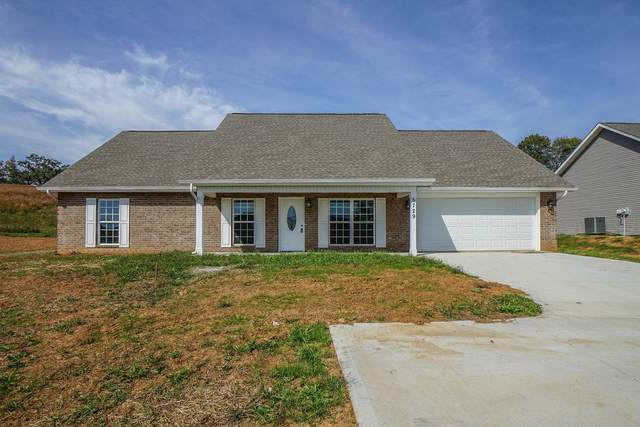 5729 Nails Creek Rd, Maryville, TN 37804 (#1120189) :: Billy Houston Group
