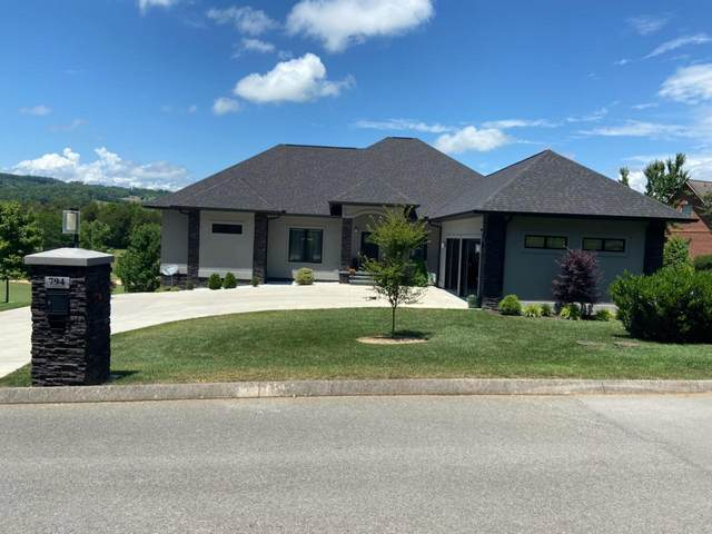 794 Woodlake Blvd Blvd, Tazewell, TN 37879 (#1121474) :: Shannon Foster Boline Group