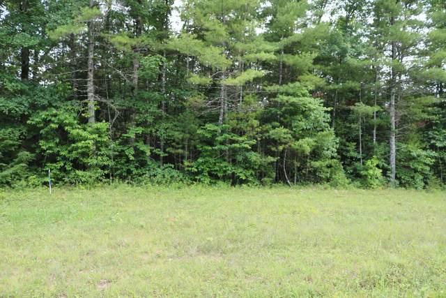 Hemlock Bluff Way, Deer Lodge, TN 37726 (#1121540) :: Billy Houston Group