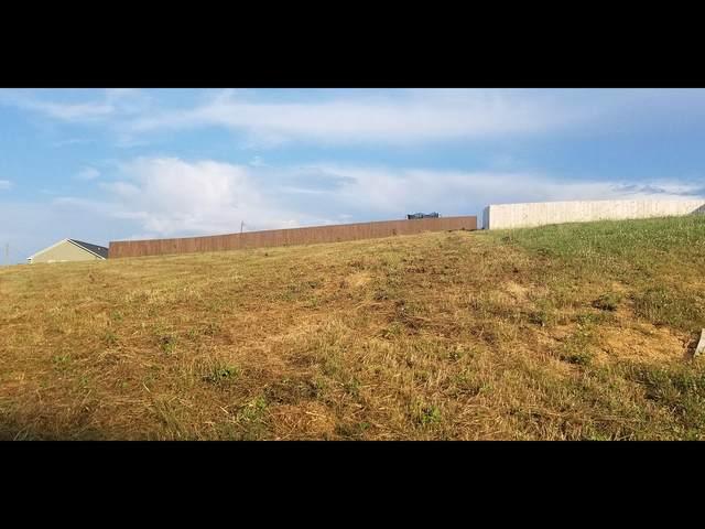Lot 173 Low Valley Drive, Dandridge, TN 37725 (#1121825) :: Tennessee Elite Realty