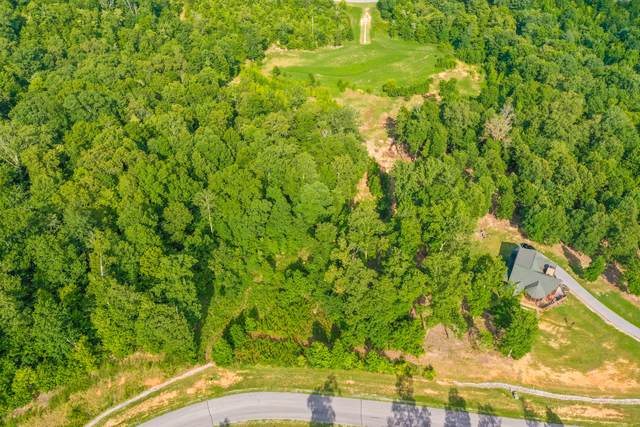 Thief Neck View Drive, Rockwood, TN 37854 (#1122665) :: Realty Executives
