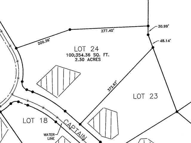 1959 Riverview Drive, Dandridge, TN 37725 (#1123790) :: Catrina Foster Group