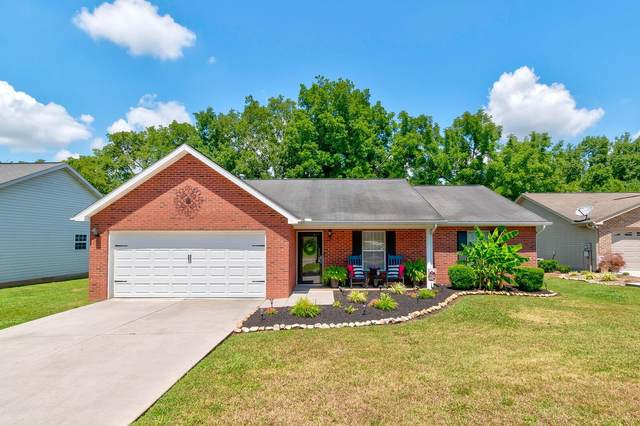 4619 Daisy Mae Lane, Knoxville, TN 37938 (#1124307) :: Realty Executives