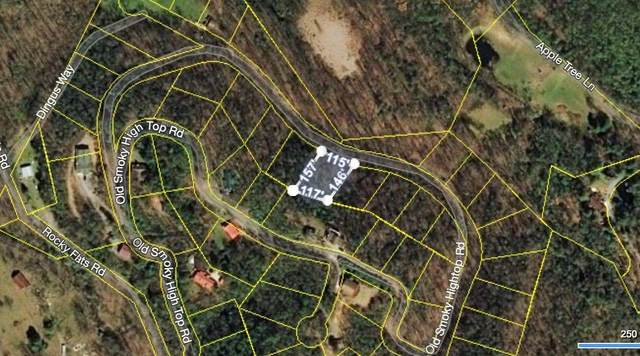 Old Smoky High Top Rd, Cosby, TN 37722 (#1124976) :: The Terrell-Drager Team