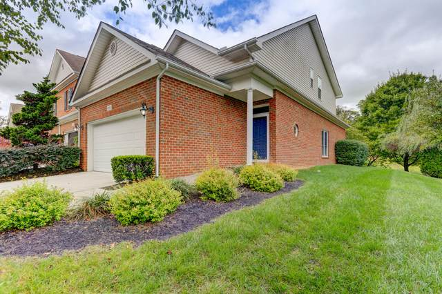 8311 David Tippit Way, Knoxville, TN 37931 (#1125779) :: Venture Real Estate Services, Inc.