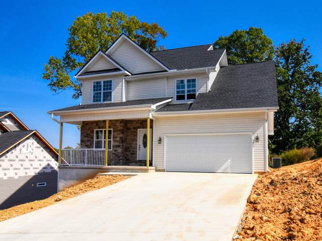 3910 Mountain Vista Rd, Knoxville, TN 37931 (#1125996) :: Tennessee Elite Realty