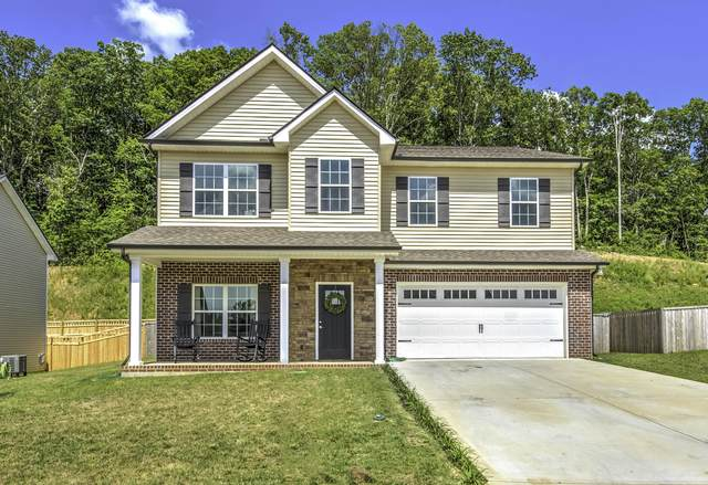3122 Oakwood Hills Lane, Knoxville, TN 37931 (#1126349) :: Exit Real Estate Professionals Network