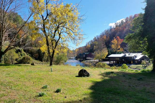 Rafter Rd, Tellico Plains, TN 37385 (#1126608) :: Billy Houston Group