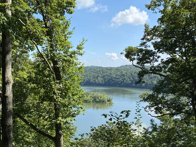 938 Eagle Nest Drive, Loudon, TN 37774 (#1126882) :: Billy Houston Group