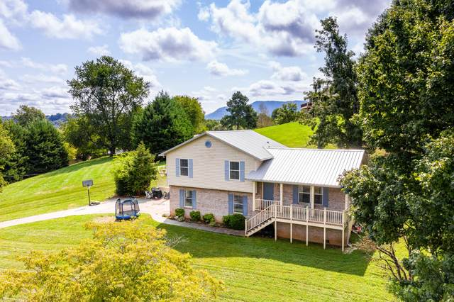 317 Iroquois Lane, Seymour, TN 37865 (#1127685) :: Shannon Foster Boline Group