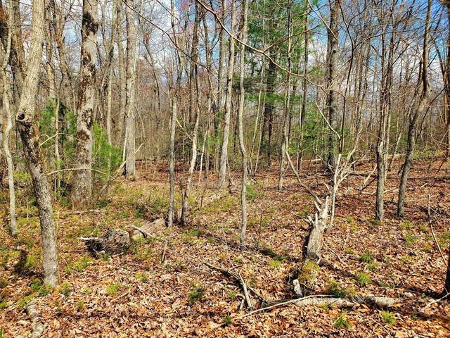 Lot 2 Carrie Drive, Crossville, TN 38572 (#1128354) :: Tennessee Elite Realty