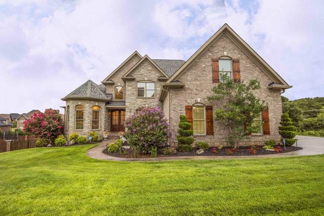 12312 Conner Springs Lane, Knoxville, TN 37932 (#1128385) :: The Cook Team