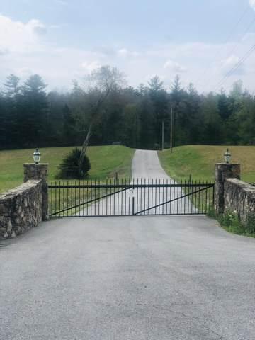 White Creek Acres, Deer Lodge, TN 37726 (#1129457) :: Adam Wilson Realty