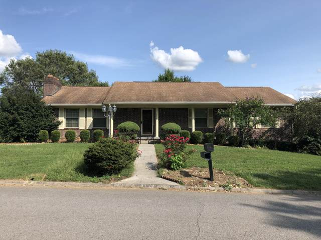 6614 Trinity Drive, Knoxville, TN 37918 (#1129486) :: Venture Real Estate Services, Inc.
