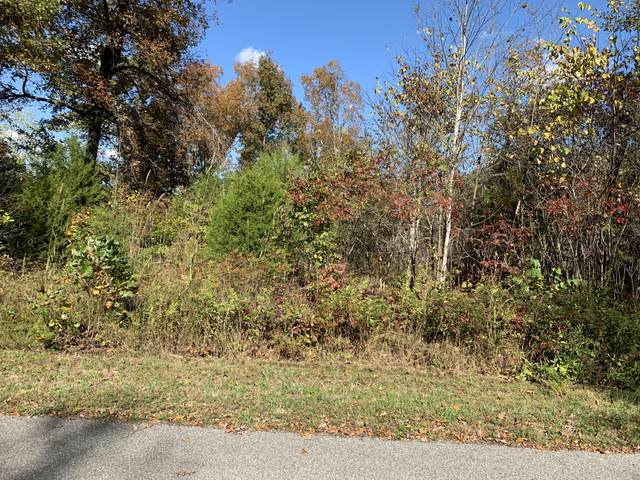 lot 82 Saddleridge Drive, Speedwell, TN 37870 (#1129730) :: Billy Houston Group