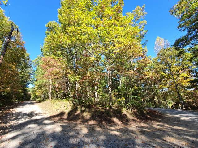 S Hilltop Drive, Tallassee, TN 37878 (#1130746) :: Tennessee Elite Realty