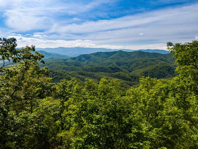 Lot 126E And 127E Settlers View Lane, Sevierville, TN 37862 (#1130883) :: Catrina Foster Group