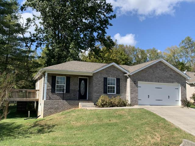 6319 Daisy Pointe Lane, Knoxville, TN 37920 (#1131795) :: Billy Houston Group