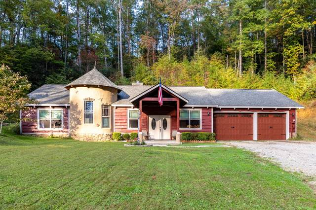 4529 Bruce Ogle Way, Pigeon Forge, TN 37863 (#1133101) :: The Terrell Team