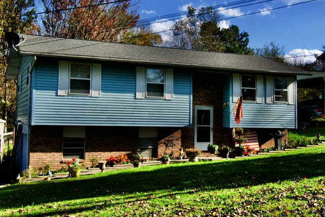 3636 Clover Hill Mill Rd, Maryville, TN 37801 (#1133429) :: Billy Houston Group