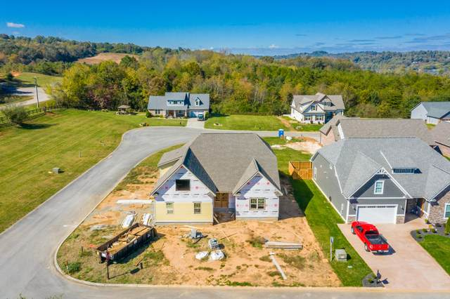681 Cape Hatteras, Loudon, TN 37774 (#1133818) :: The Cook Team