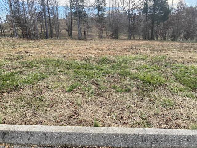 Blue Heron Bluff, Lot 56, Harriman, TN 37748 (#1133977) :: Shannon Foster Boline Group