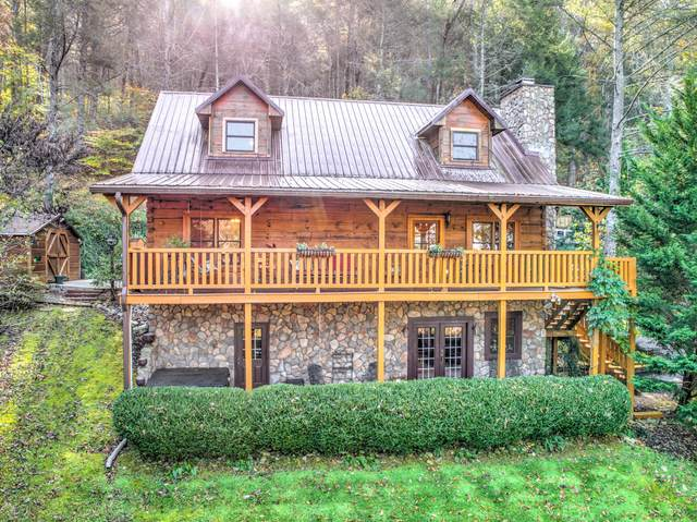 503 Domar Court, Townsend, TN 37882 (#1134733) :: Shannon Foster Boline Group