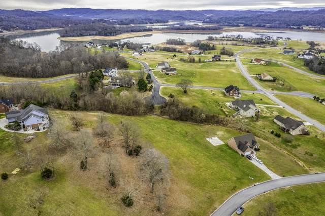 9016 Paradise View Drive, Mooresburg, TN 37811 (#1134929) :: Billy Houston Group