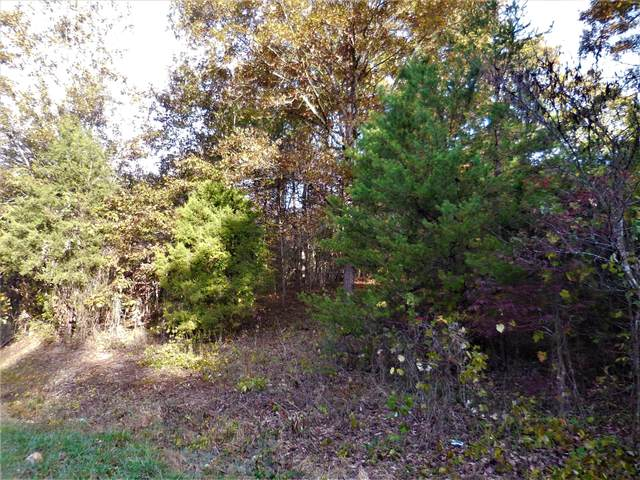 6591 Wolf Creek Rd, Spring City, TN 37381 (#1134959) :: Tennessee Elite Realty