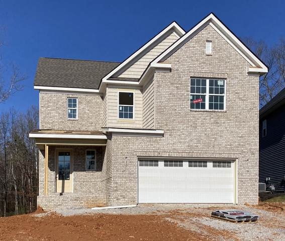 10601 Trulock Lane, Knoxville, TN 37934 (#1135287) :: Billy Houston Group