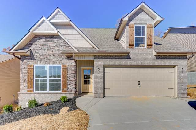3647 Meredith Lynn Way, Knoxville, TN 37924 (#1135762) :: Billy Houston Group