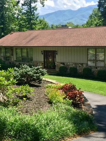 1115 Cedar Lane, Gatlinburg, TN 37738 (#1135953) :: Adam Wilson Realty