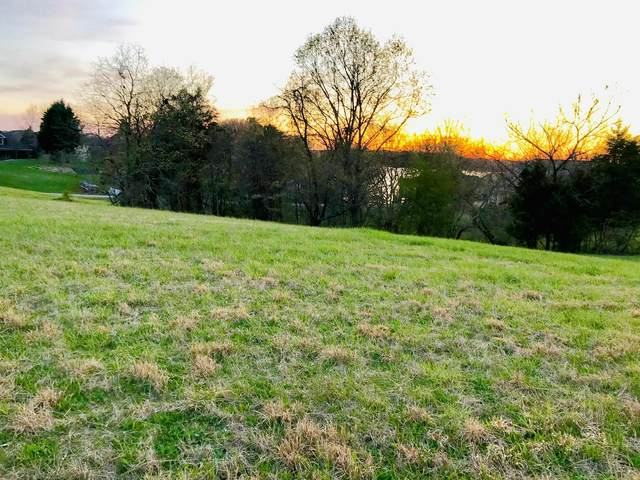 Indian Shadows Drive Drive, Vonore, TN 37885 (#1135960) :: Tennessee Elite Realty