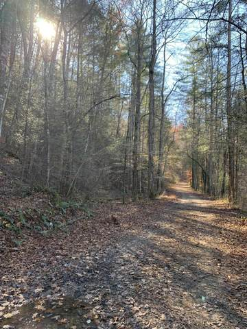 Bear Den Trail  Lot 122, Grandview, TN 37337 (#1135966) :: Cindy Kraus Group | Realty Executives Associates