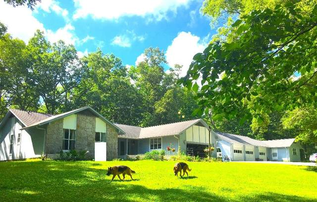 569 Peavine Firetower Rd, Crossville, TN 38571 (#1136156) :: Billy Houston Group