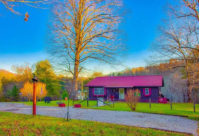 533 Epperson Rd, Tellico Plains, TN 37385 (#1136458) :: Realty Executives Associates Main Street