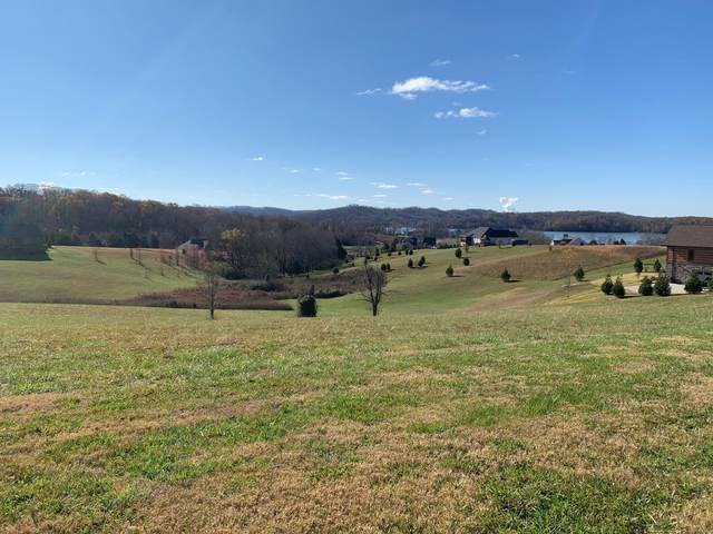 213 Majestic View Drive, Rockwood, TN 37854 (#1136621) :: Tennessee Elite Realty