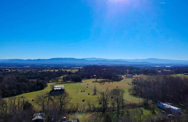 12.32 acre Moore Rd, Dandridge, TN 37725 (#1138257) :: Billy Houston Group